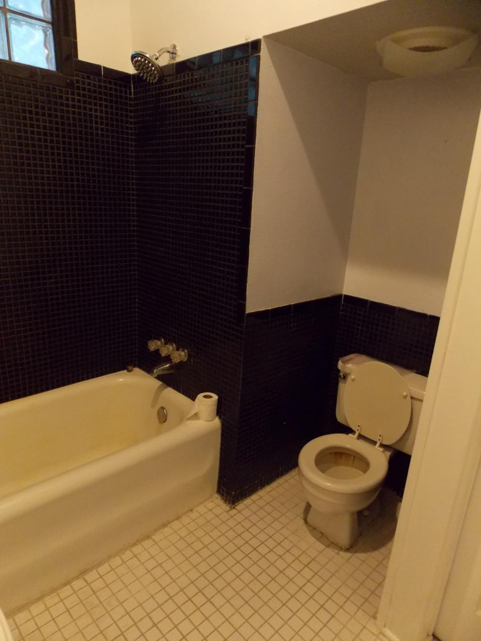 HFXUP105H_muska-bathroom-before-122308_331068_v.jpg.rend.hgtvcom.966.1288
