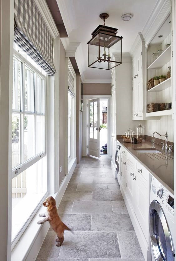 Puppy and Laundry Room